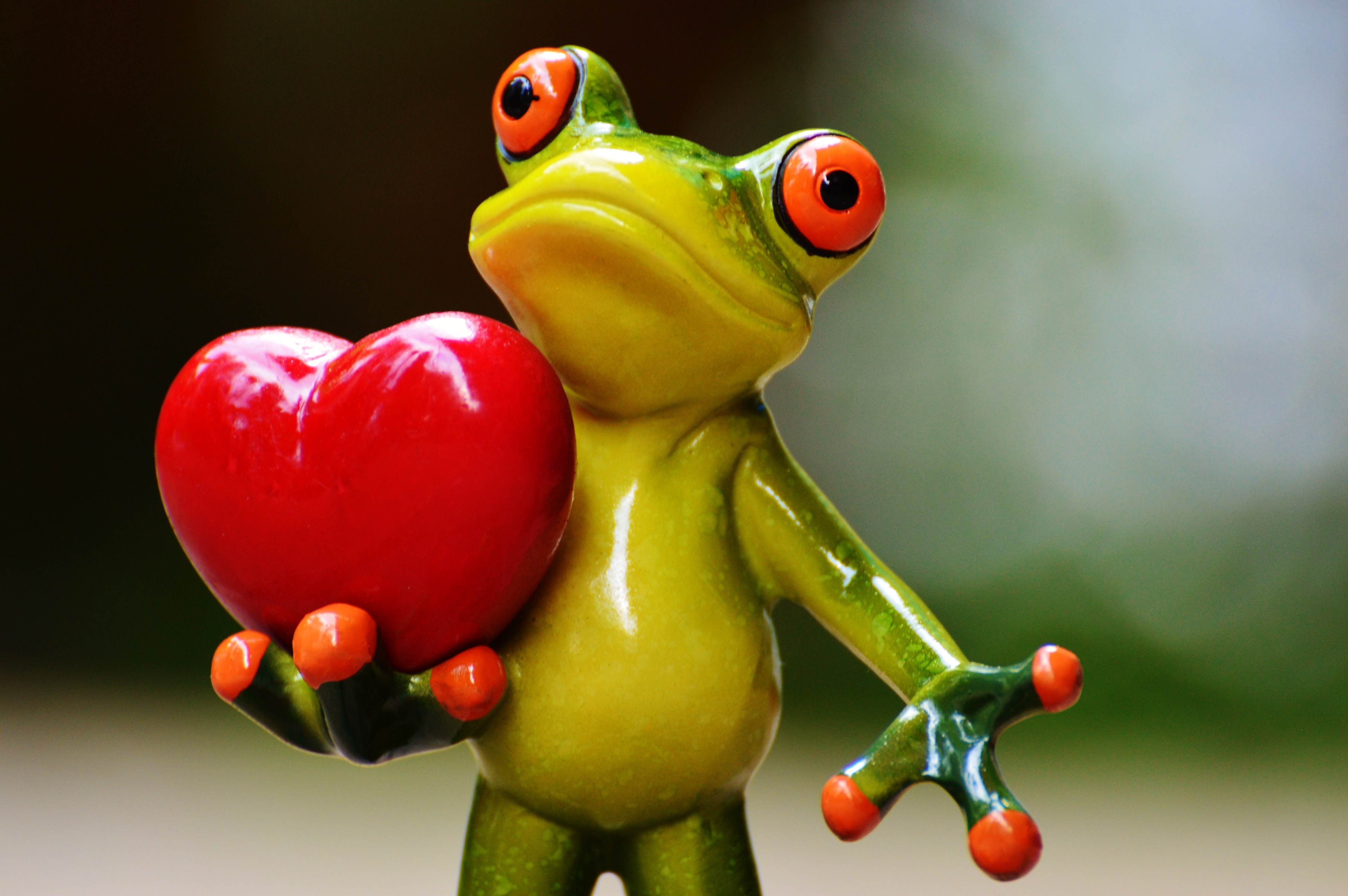 lovefrog